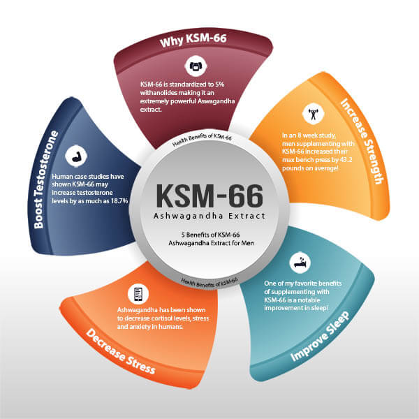 KSM-66 Ashwagandha Health Benefits for Men