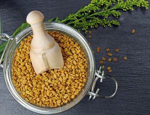 fenugreek (testofen) does not boost testosterone
