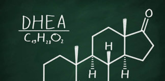 Does DHEA Increase Testosterone?