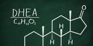 Does DHEA Increase Testosterone?