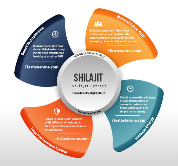 Health Benefits of Shilajit Extract